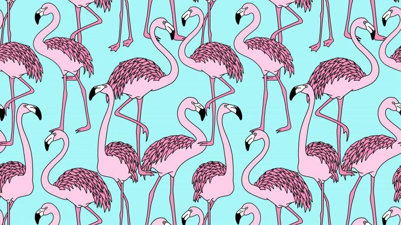 Ausgemalte Flamingos auf blauem Grund